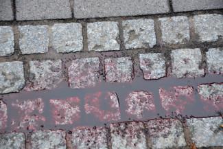 «В крови вся голова». В соцсетях сообщают о сбитой в Пензенской области девушке