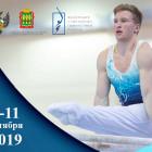 Юные пензенцы выступят на Первенстве ПФО по спортивной гимнастике
