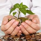 У пензенских аграриев самая высокая зарплата в ПФО