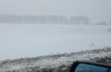 «Не лето». Пензу накрыло первым снегом. ФОТО