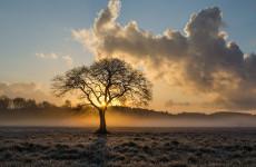 16 октября в Пензенской области ожидается похолодание