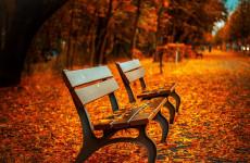 Какая погода ожидает пензенцев 19 октября?