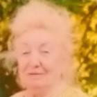 В Пензе остановили поиски 82-летней пенсионерки