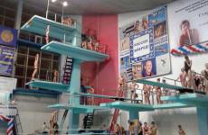 На соревнованиях в Воронеже шесть медалей взяли пензенские пловцы