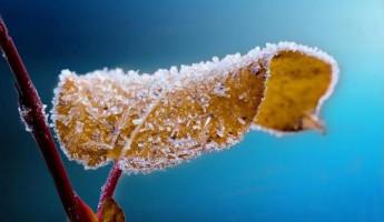Суббота встретит пензенцев морозной погодой