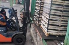 «Нельзя скушать». В Пензенской области уничтожили около 4 тонн груш