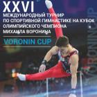 Пенза примет Международный турнир по спортивной гимнастике