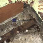 В Пензенской области мужчина сломал отвертку и нож об бывшую жену