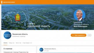 Правительство Пензенской области запустило новые проекты в соцсетях