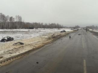Три человека погибли. Смертельная авария на трассе «Тамбов-Пенза»