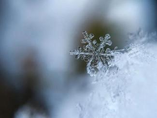 Завтра в Пензенской области похолодает до -7 ºС