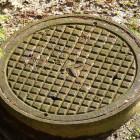У пензячки, тело которой нашли в канализации, остались четверо детей