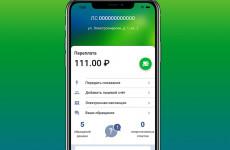ПАО ГК «ТНС энерго» выпустило приложение для iOS