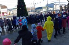 В пензенской Терновке прошла новогодняя елка