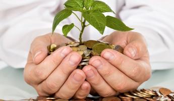 Пензенские аграрии получают самую высокую зарплату в ПФО