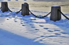 В Пензенской области следы на снегу помогли поймать воров