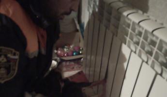 Пензенские спасатели пришли на помощь собаке, застрявшей в батарее