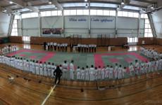 В Пензе подвели итоги соревнований по всестилевому каратэ