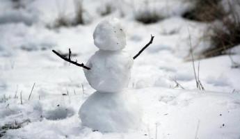 Прогноз погоды в Пензенской области на 26 января
