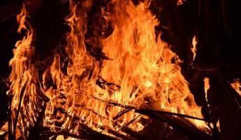 Жуткий пожар в Пензенской области унес жизнь мужчины