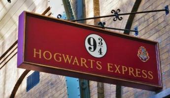 Пензенцев приглашают в Лермонтовку на Ночь Гарри Поттера