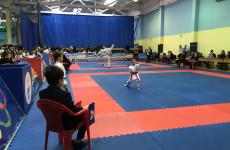 В Пензе подвели итоги чемпионата и первенства области по каратэ