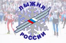 Пензенцев приглашают принять участие в массовой гонке «Лыжня России»