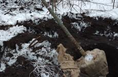 Житель Пензенской области нарубил себе «путевку» в полицию