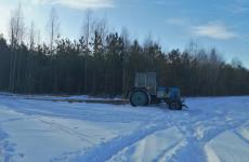 Вместе с деревьями житель Пензенской области «нарубил» себе проблем