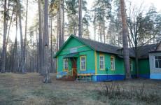 Пензенские власти рассказали о судьбе детского лагеря «Орленок»