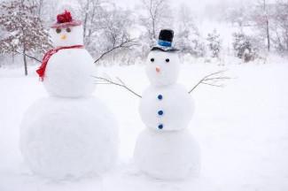 Какая погода ожидает пензенцев 15 февраля?