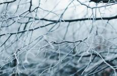 В воскресенье в Пензенской области ожидается плюсовая температура