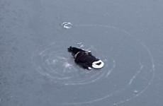 Обнародованы фото с места обнаружения трупа женщины в Пензе