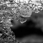 В Пензе ГИБДД ищет свидетелей аварии с участием «Ягуара»