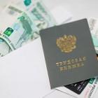 Пензенским рабочим выплатили долг по зарплате на общую сумму около 20 миллионов рублей