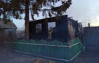 В Пензенской области во время страшного пожаре погибли семь человек