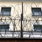 Преступников в пензенских тюрьмах кормят курами-гриль, выращенными «вертухаями»
