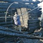 Семьям погибших при пожаре в Пензенской области окажут помощь