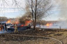 В Пензенской области огонь уничтожил сразу три сарая