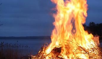 В Пензенской области пожарные 16 раз за сутки тушили сухую траву с мусором