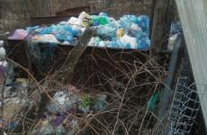 «Примите меры». Жительницу Пензенской области возмутила несанкционированная свалка