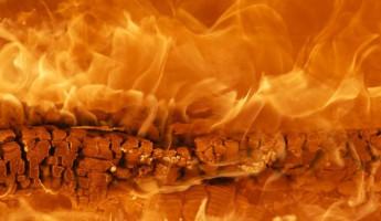 Жуткий пожар под Пензой унес жизни трех человек