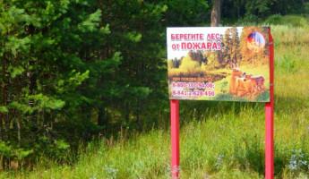 В шести районах Пензенской области установлен противопожарный режим