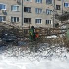 В Пензе продолжают устранять последствия снегопада