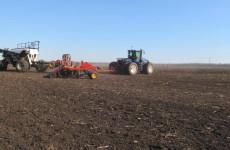 В Пензенской области посевная площадь увеличена на 26 тысяч гектаров