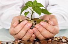 Пензенские аграрии получают самую высокую в ПФО зарплату