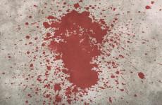 Уголовница из Пензы пыталась устроить кровавую расправу над сожителем
