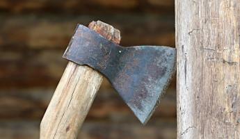 В Пензенской области оскорбленный мужчина искромсал приятеля топором