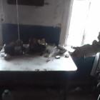 Обнародованы фото с места кровавого конфликта в Пензенской области