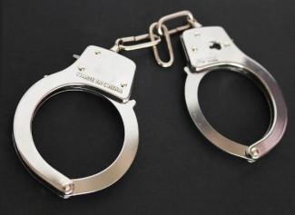 Замглавы пензенского минсельхоза задержан по делу о мошенничестве